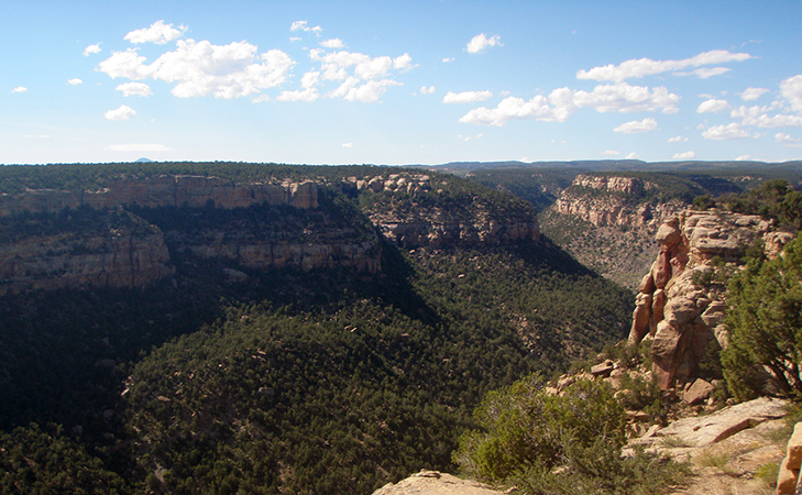 View of a canyon, Masa Verde National Park, Colorado (photo: cfcheever, CC: BY-NC-SA 2.0)