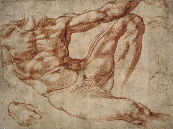 Michelangelo Buonarotti, Study for Adam, c. 1510-11, red chalk, 19.3 x 25.9 cm, © Trustees of the British Museum.