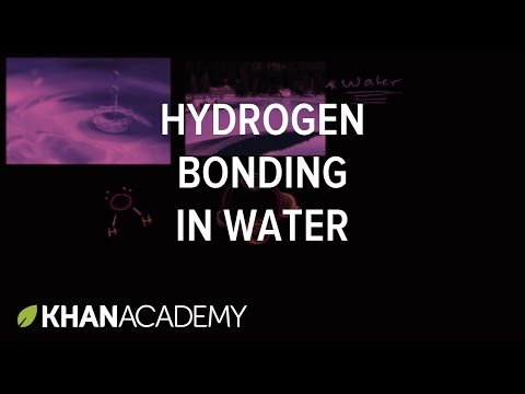 Water as a solvent (video) | Khan Academy