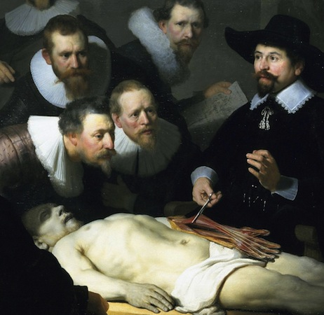 Dr. Tulp displaying the flexors in a cadaver's arm (detail), Rembrandt van Rijn, The Anatomy Lesson of Dr. Tulp, 1632, oil on canvas, 169.5 x 216.5 cm (Mauritshuis, The Hague)