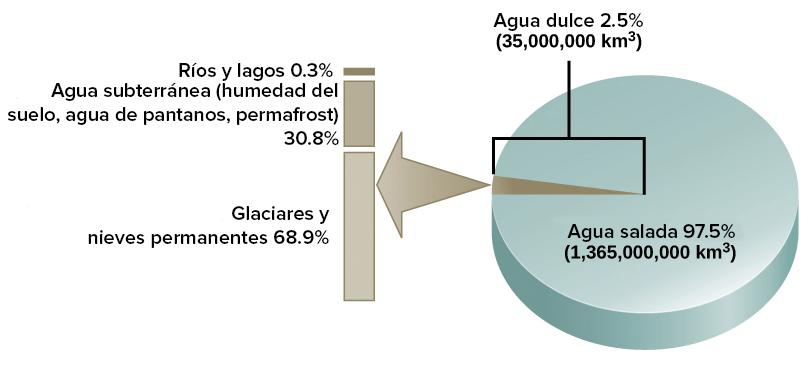 El ciclo del agua (artículo) | Ecología | Khan Academy