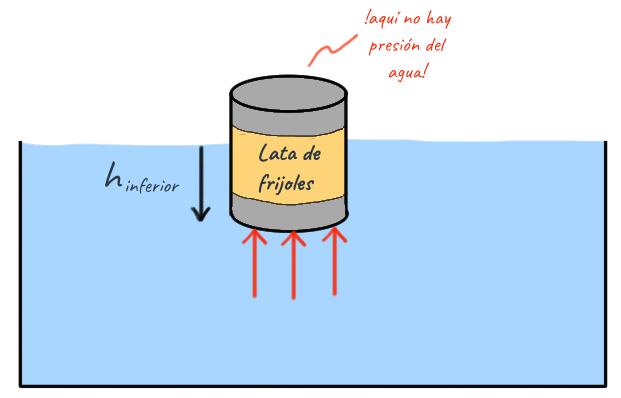 Qué es la fuerza de flotación? (artículo)   Khan Academy