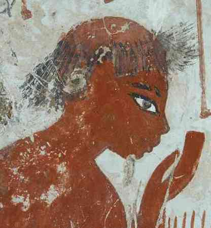 Old man assessing crops (detail), Tomb Chapel of Nebanum, c. 1350 B.C.E., 18th Dynasty, paint on plaster, whole fragment: 106.7 x 45.8 cm, Thebes © The Trustees of the British Museum