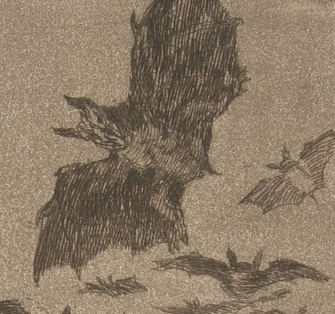 "Birds (detail), Goya, Plate 43, ""Los Caprichos"": The sleep of reason produces monsters, 1799, etching, aquatint, drypoint, and burin, plate: 21.2 x 15.1 cm  (The Metropolitan  Museum of Art)"