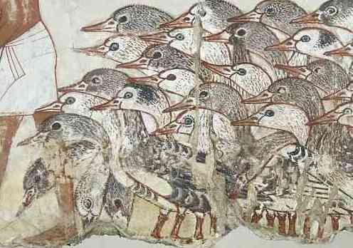 Geese (detail), Painting from the tomb chapel of Nebamun, c. 1350 B.C.E., paint on plaster, whole fragment: 71 x 115.5 cm, Thebes © Trustees of the British Museum