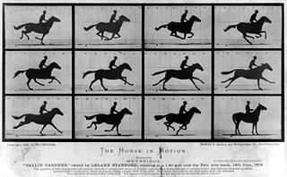 "Eadweard Muybridge, The Horse in Motion (""Sallie Gardner,"" owned by Leland Stanford; running at a 1:40 gait over the Palo Alto track, 19th June 1878)"