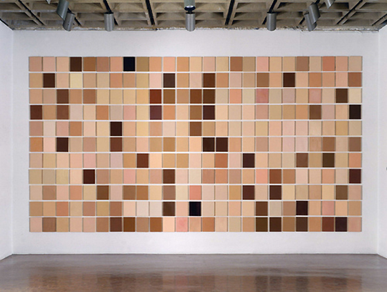 Byron Kim, Synecdoche, 1991–present, oil and wax on 275 panels, each 25.4 x 20.32 cm. Courtesy the artist and Max Protetch Gallery, New York © 2008 Byron Kim (The Museum of Modern Art, New York)
