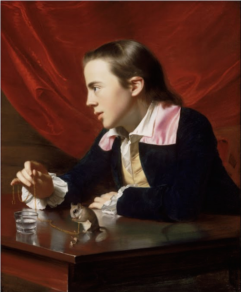 John Singleton Copley, A Boy with a Flying Squirrel (Henry Pelham), 1765, oil on canvas, 77.15 x 63.82 cm (Museum of Fine Arts, Boston)