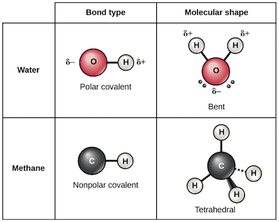 Ionic Covalent And Metallic Bonds Video Khan Academy