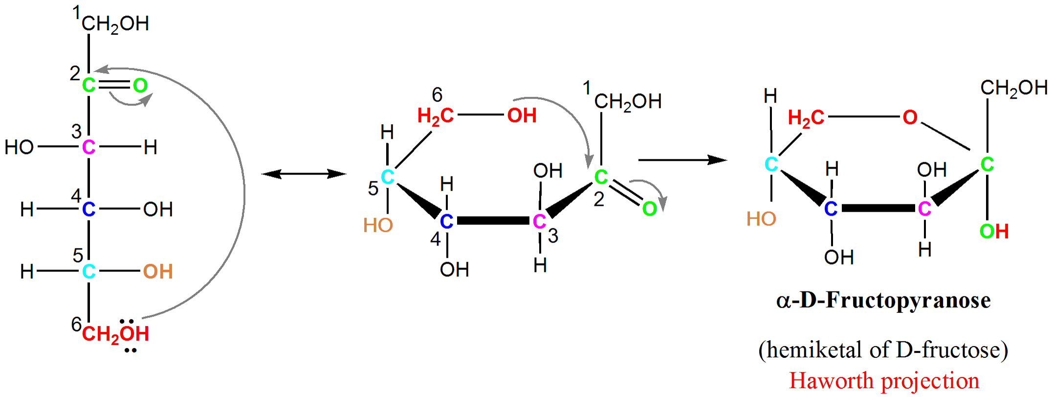 Chair conformation glucose - Reaction Creating Alpha D Fructopyranose