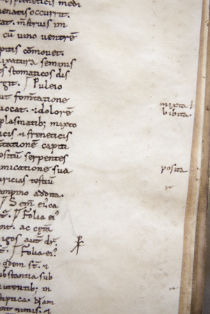 Marginal glosses with corrections next to the text, Leiden, University Library, VLQ MS 1, fol. 16r (photo: Giulio Menna)