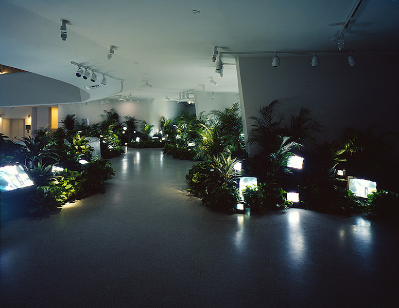 Nam June Paik, TV Garden, 1974 (image shows 2000 version), video installation with color television sets and live plants (Solomon R. Guggenheim Museum) (© Nam June Paik Estate)