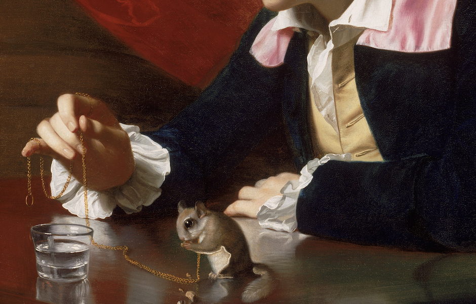 Hands, chain and squirrel (detail), John Singleton Copley, A Boy with a Flying Squirrel (Henry Pelham), 1765, oil on canvas, 77.15 x 63.82 cm (Museum of Fine Arts, Boston)