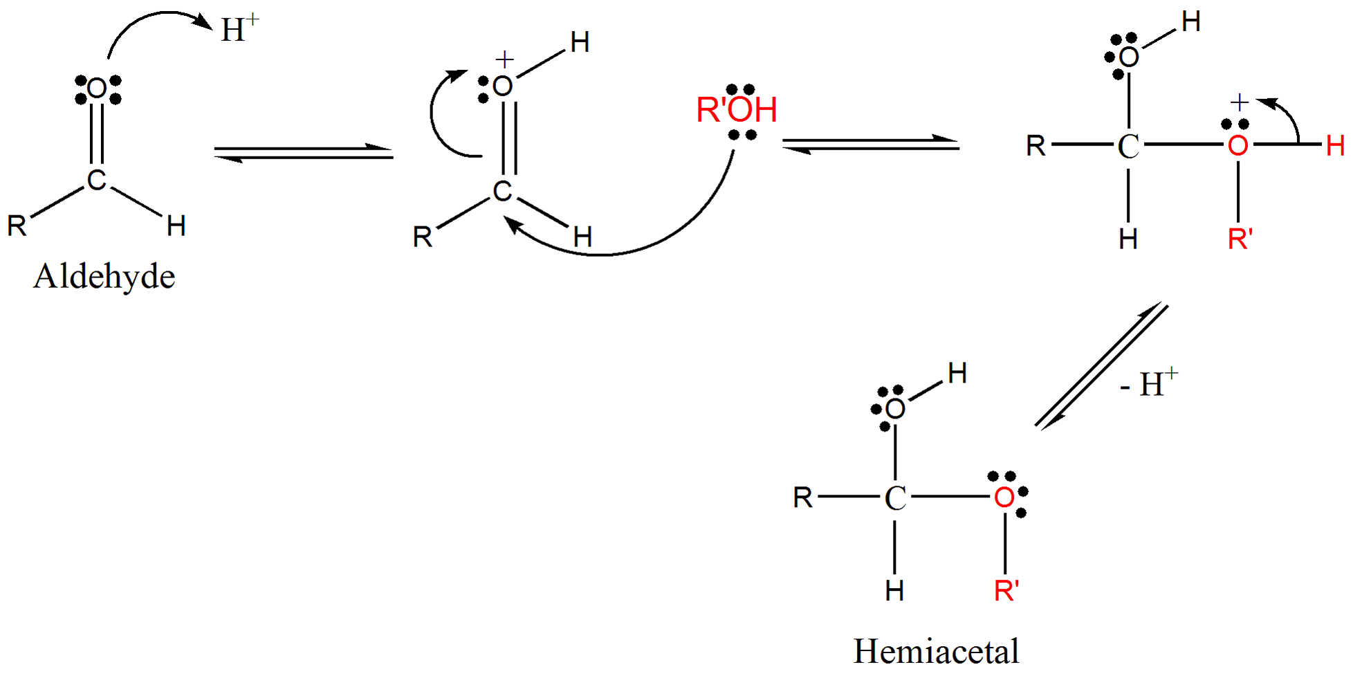 Chair conformation glucose - Reaction Creating Hemiacetal