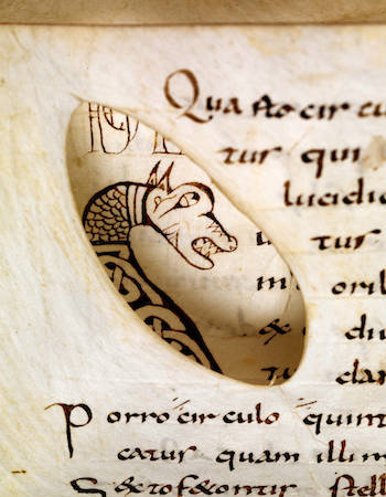 """Through-view"" of an animal head initial. Eastern France, the first third of the ninth century. (Msc.Nat.1, fol. 25v and 26v)."