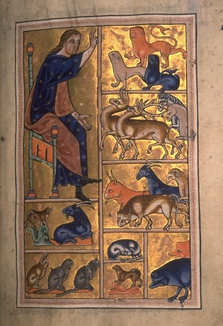 Adam names the animals from folio 5 recto of the Aberdeen Bestiary, written and illuminated in England around 1200