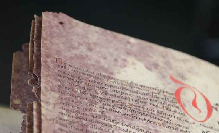 BPL 2896, 12th century (Leiden, Universiteitsbibliotheek) (photo: Erik Kwakkel)