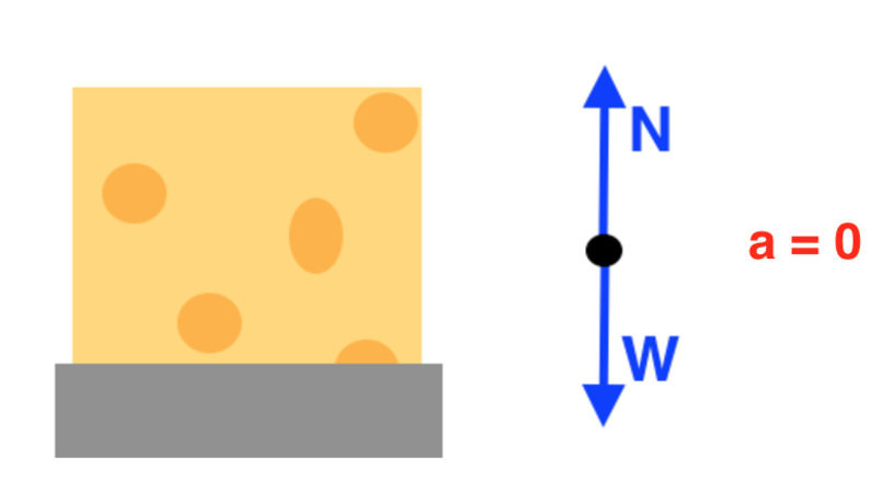 Introduction to forces and free body diagrams review article the free body diagram for a block of cheese resting on a table has normal force n up weight w down and no acceleration ccuart Image collections