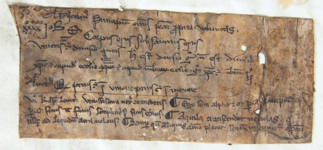 Leiden, University Library, BPL MS 191 D, fragment, 13th century (photo: Giulio Menna)