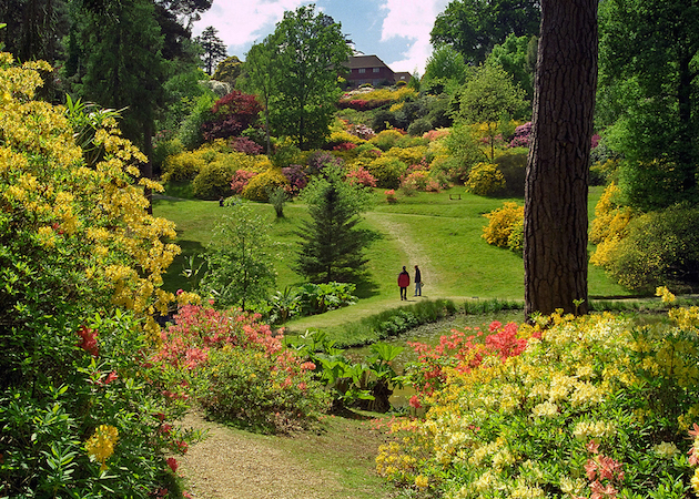 View of sheltered valley, Leonardslee Gardens, England (photo: ukgardenphotos, CC BY-NC-ND 2.0)