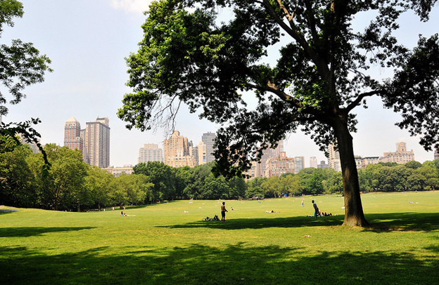 Sheep Meadow, Central Park, New York City (photo: yourdon, CC BY-NC-SA 2.0)