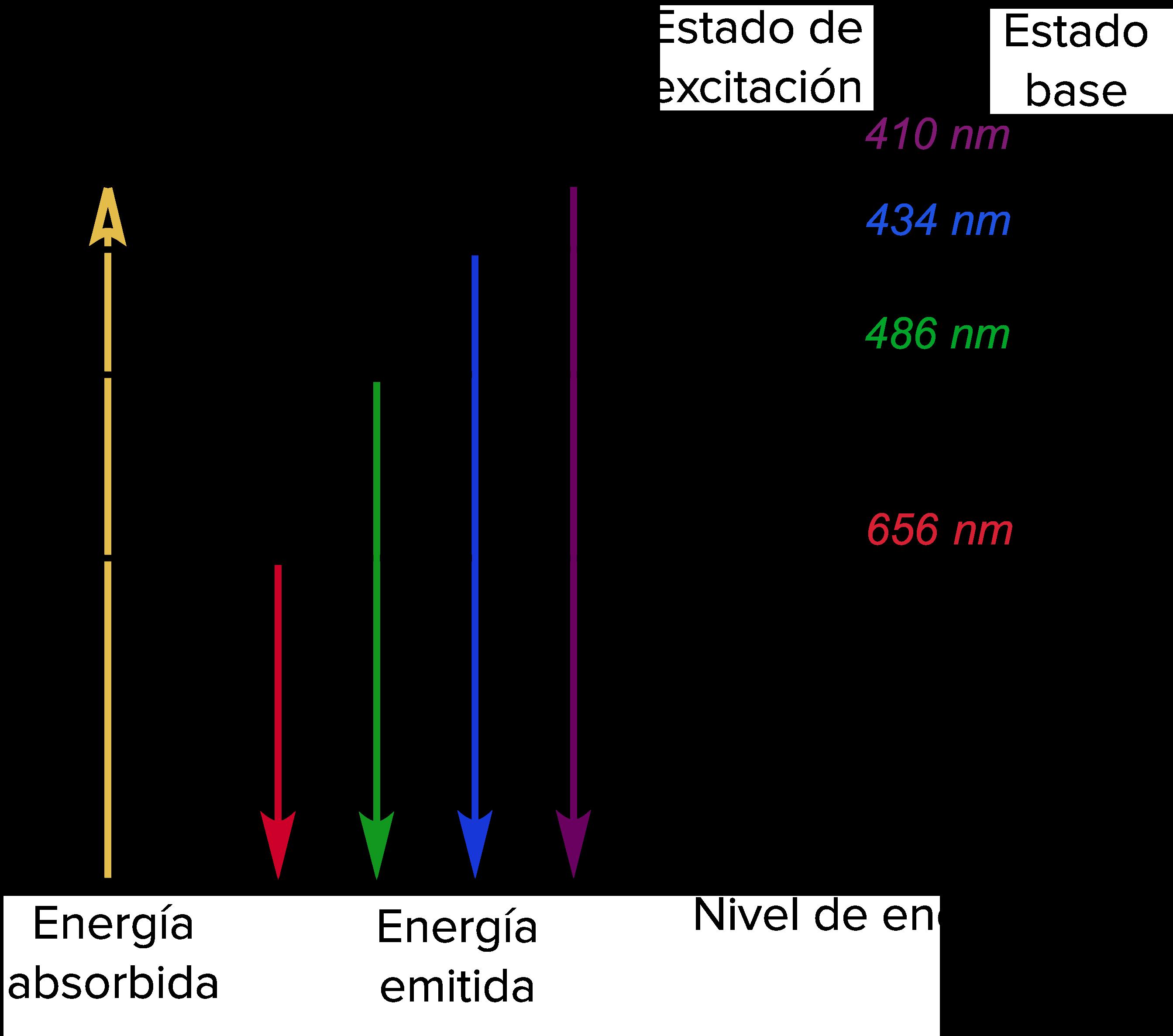 Modelo de Bohr del hidrógeno (artículo) | Khan Academy