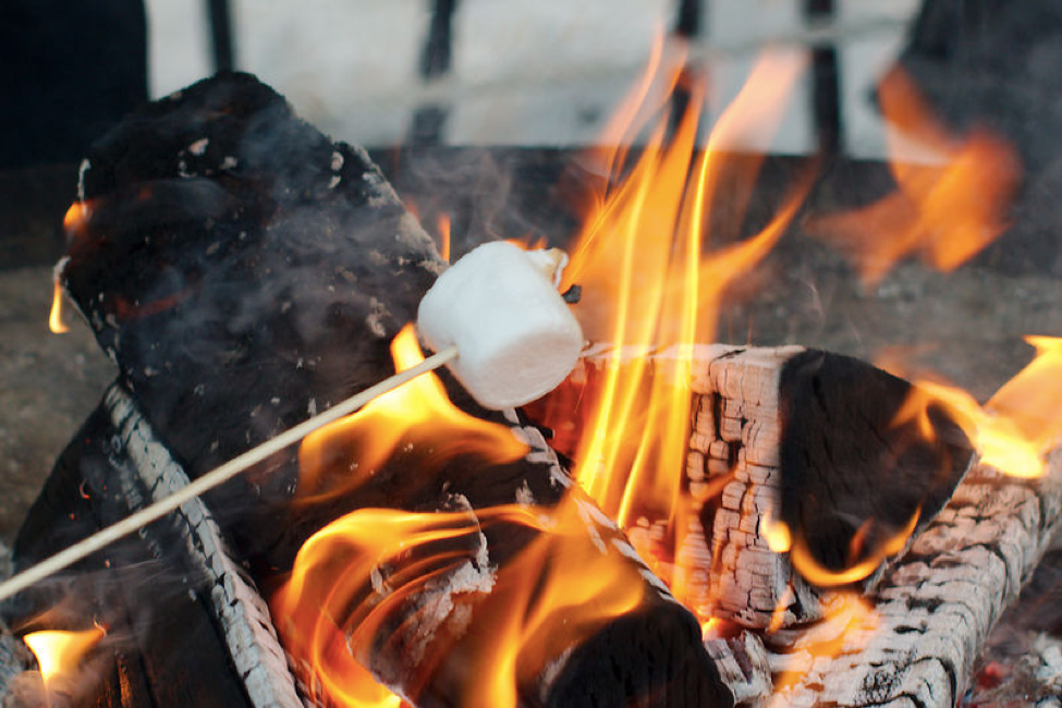 Energy In Chemical Bonds Photograph Of Marshmallow On Stick Roasting Over A Campfire