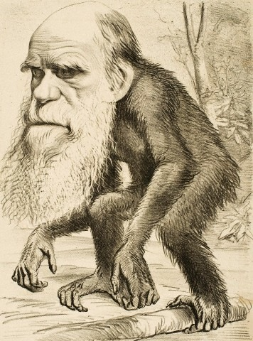 A caricature of Charles Darwin from 1871 © PoodlesRock/CORBIS
