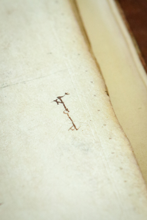 Leiden, University Library, VLQ MS 10, fol. 93r (photo: Giulio Menna)