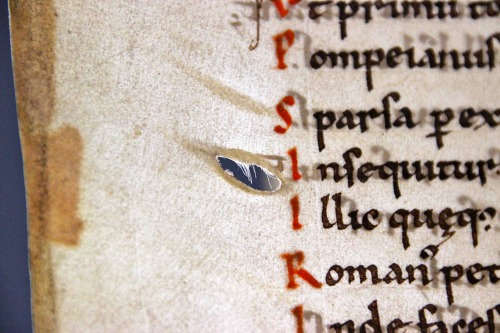 A cut, accidentally left there by the medieval parchment maker when he scraped the hairs off the processed skin. If you look carefully you will see that the hole contains some white hairs from the cow who donated his skin for the production of this book. BUR MS 1, c. 1100) (Leiden, Universiteitsbibliotheek) (photo: Erik Kwakkel)