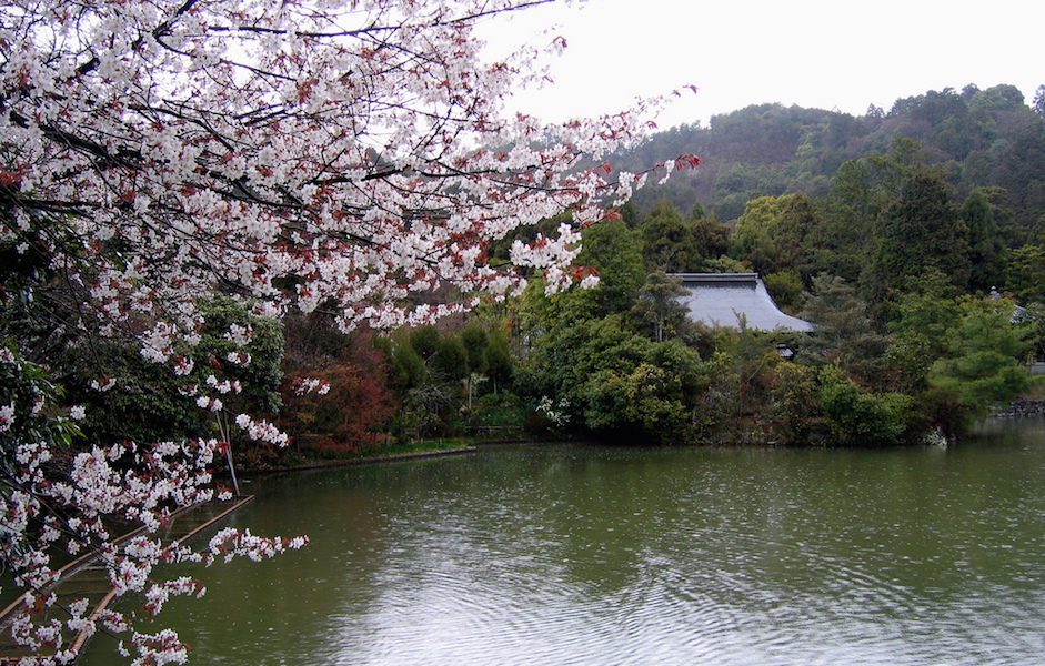 Kyōyōchi (Mirror Pond,) Ryōanji, Kyoto, Japan (photo: jpellgen, CC BY-NC-ND 2.0)