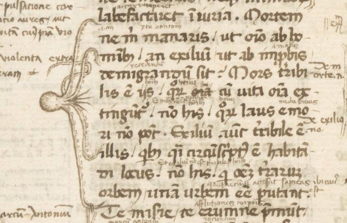 Marginal bracket in the shape of an octopus (with five legs), Cicero, Paradoxa stoicorum, 14th century, Berkeley, Bancroft Library, BANC MS UCB 85, fol. 1v