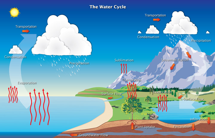 The water cycle article ecology khan academy ccuart Image collections