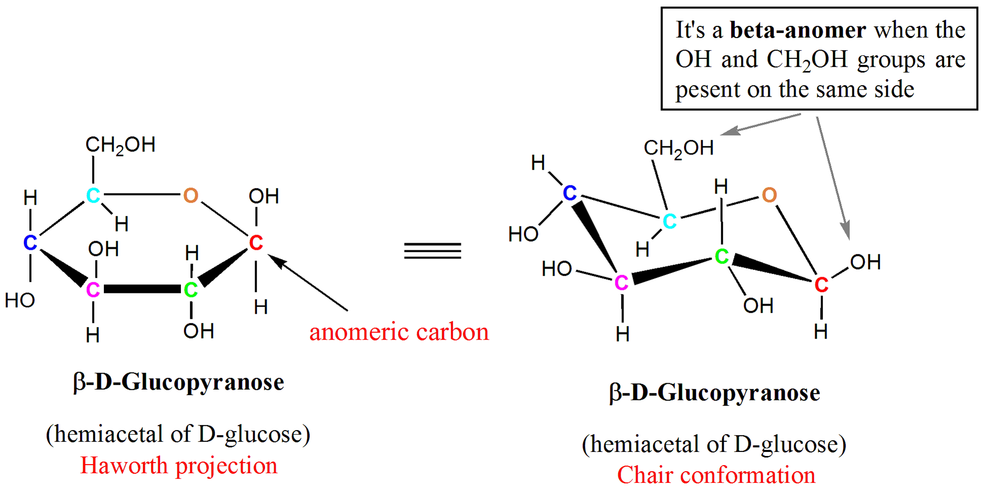 Chair conformation glucose - Haworth Projection And Chair Conformation